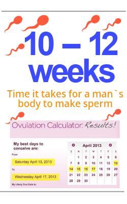 Body make Sperm dpp